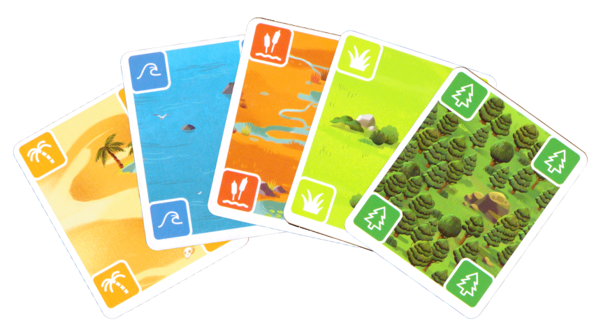 The Nature Cards